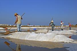 Marisol Sea Salt - About Us   Marisol   Marisol